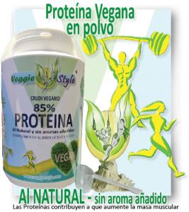 Veggie Style Proteína 85 % sin sabor 1 KG