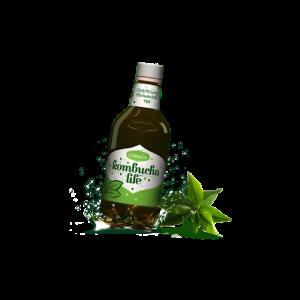 Kombucha with ginger 330 ml