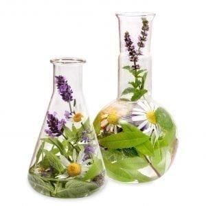 Detoxification of the organism